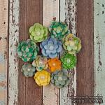 ЦЕНА СНИЖЕНА! Набор цветов Prima - Free Spirit Flower - Far Out - ScrapUA.com