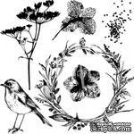 Набор штампов от Артелье - «PHOTOсинтез». Размеры в см: 8x8. - ScrapUA.com