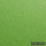 Дизайнерская бумага Stardream fairway, 30х30, зеленая оливковая, 120 г/м2 - ScrapUA.com