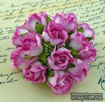 Бутоны диких роз Large 2-tone Pink Wild Rosebuds, 5 шт - ScrapUA.com