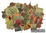 Набор декоративных элементов от Kaisercraft - Великая южная земля, 50 шт - ScrapUA.com