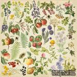Лист с картинками для вырезания Summer botanical diary 30,5х30,5 см, ТМ Фабрика Декора - ScrapUA.com