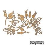 Набор чипбордов Autumn botanical diary 10х15 см 737, цвет крафт, ТМ Фабрика Декора - ScrapUA.com