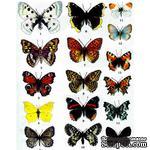 Оверлей - Фабрика Декора -  Бабочки Цветные, размер А4 - ScrapUA.com