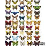 Оверлей - Фабрика Декора -  Бабочки мини, размер А4 - ScrapUA.com