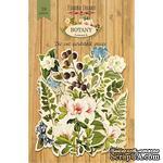 Высечки, коллекция Botany summer,  59 штук, ТМ Фабрика Декора - ScrapUA.com