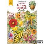 Набор высечек коллекция Botany exotic fruits, ТМ Фабрика Декора - ScrapUA.com