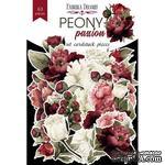 Набор высечек коллекция Peony passion, ТМ Фабрика Декора - ScrapUA.com