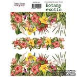 Набор наклеек (стикеров) 3 шт Botany exotic 201, ТМ Фабрика Декора - ScrapUA.com