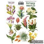 Набор наклеек (стикеров) 10 шт Botany exotic 204, ТМ Фабрика Декора - ScrapUA.com