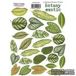Набор наклеек (стикеров) 25 шт Botany exotic 208, ТМ Фабрика Декора - ScrapUA.com