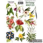 Набор наклеек (стикеров) 10 шт Botany exotic 210, ТМ Фабрика Декора - ScrapUA.com