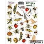 Набор наклеек (стикеров) 30 шт Botany exotic 211, ТМ Фабрика Декора - ScrapUA.com