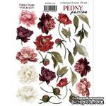 Набор наклеек (стикеров) 26 шт Peony passion 219, ТМ Фабрика Декора - ScrapUA.com