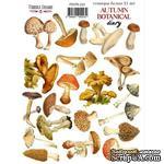 Набор наклеек (стикеров) 21 шт Autumn botanical diary 223, ТМ Фабрика Декора. - ScrapUA.com