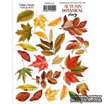 Набор наклеек (стикеров) 22 шт Autumn botanical diary 224, ТМ Фабрика Декора. - ScrapUA.com
