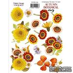 Набор наклеек (стикеров) 14 шт Autumn botanical diary 226, ТМ Фабрика Декора. - ScrapUA.com