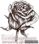 Акриловый штамп FL004a Роза, размер 2,7 * 3 см - ScrapUA.com