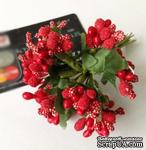 Веточки с ягодками, цвет красный, 12 штук, B63129 - ScrapUA.com