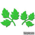 Лезвие Crafty Ann - Flourish 14 (набор) - ScrapUA.com