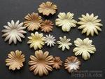 Набор цветов коричневого и белого оттенков, 20-50 мм, 20 шт. - ScrapUA.com