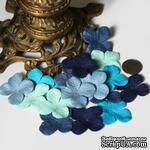 Гортензия, микс цветов: синий, 3,2 см, 20 шт. - ScrapUA.com