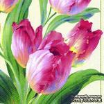 """Салфетка для декупажа """"Тюльпаны, цветение"""", цвет фона: кремовый, размер: 33х33 см - ScrapUA.com"""