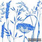 """Салфетка для декупажа """"Дикие травки"""", цвет фона: синий на белом, размер: 33х33 см - ScrapUA.com"""