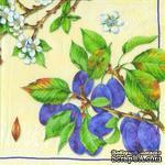 """Салфетка для декупажа """"Ветки спелой сливы и цветущие ветви"""", цвет фона: кремовый, размер: 33х33 см - ScrapUA.com"""