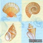 """Салфетка для декупажа """"Морские раковины"""", цвет фона: белый/голубой, размер: 33х33 см - ScrapUA.com"""