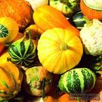 """Салфетка для декупажа """"Осенний урожай"""", размер: 33х33 см - ScrapUA.com"""