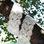 Лента с розами на фатине, тройная, цвет: кремовый, ширина 85 мм, 60 см - ScrapUA.com