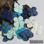 Гортензия, микс цветов: синий и белый, 2,5 см, 20 шт. - ScrapUA.com