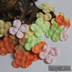 Гортензия, микс цветов: пастельный, 2,5 см, 20 шт. - ScrapUA.com