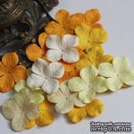 Гортензия, микс цветов: желтый, 3,2 см, 20 шт. - ScrapUA.com