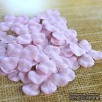 Гортензия, цвет: бледно-розовый, 2,5 см, 20 шт. - ScrapUA.com