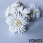 Сакура, 35 мм, цвет белый, 1 шт. - ScrapUA.com