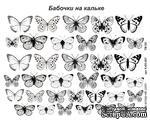 Бабочки на кальке - ScrapUA.com