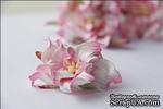 Гардения, диаметр 5 см, цвет розово-белый, 1 шт. - ScrapUA.com