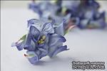 Гардения, диаметр 5 см, цвет лазурит, 1 шт. - ScrapUA.com