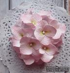 Гортензии из фоамирана,  диаметр 35 мм, цвет розовый, 5 шт. - ScrapUA.com