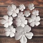 """Набор белых цветов """"Фантазия""""  диаметр - 65, 40, 22 мм, цвет белый 11 шт. - ScrapUA.com"""