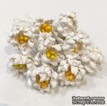 Фантазийный цветок, цвет белый, 1 шт., диаметр 15-17 мм - ScrapUA.com