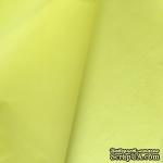 Папиросная бумага тишью 50х66см (слож.25 х 16,5см), цвет: желтый, 10 листов - ScrapUA.com