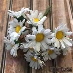 Белые ромашки, диаметр 25мм, 12 шт. - ScrapUA.com