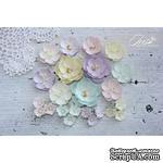 Набор цветов TM Iris - Anemone Baby Shabby, 23 шт - ScrapUA.com