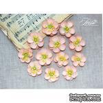 Набор цветов TM Iris - Denise розово-персиковые, 12 шт - ScrapUA.com