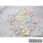 Набор цветов TM Iris - Denise Baby Shabby, 12 шт - ScrapUA.com