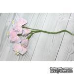 Набор цветов TM Iris - Vanille flowers Свежее утро, розовые с голубым, 5 шт - ScrapUA.com