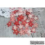 Набор цветов TM Iris - Little flowers красный, 15 мм, 30 шт - ScrapUA.com